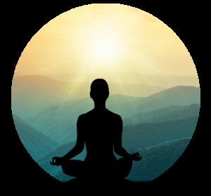 8 minduflness - objetivos y metodologia